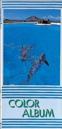 SALE!!(カミトク) KAMITOKU デラックス3段カラ−アルバム CA-73-27EX (400冊単位)