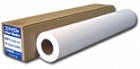 (フジテックス) FUJITeX FT速乾性光沢フォト紙R 610mmX30m