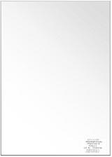 (ピクトリコ) PICTORICO PPZ200-A2/10  A2サイズ プロ・スムーズフォトペーパー 平滑面微光沢
