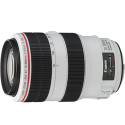 (キヤノン) Canon EF70-300mm F4-5.6L IS USM ズームレンズ 望遠