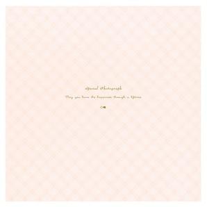 (竹野) TAKENO 489-0011~13 トコレ紙台紙 各色