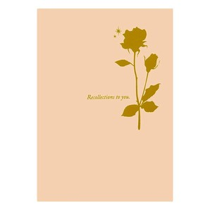 (ハクバ) HAKUBA お手軽写真台紙 ランス ポストカードサイズ 2面(飾り角・飾り角(タテ))