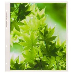 (ハクバ)HAKUBA レポートアルバムDX用替台紙 4切サイズ (10シート入)
