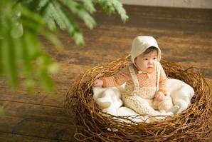 ハナムグリ ニューボーン鳥の巣(大)布付き