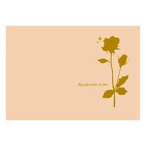(ハクバ) HAKUBA お手軽写真台紙 ランス ポストカードサイズ 2面(飾り角・飾り角(ヨコ))